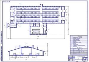 3.План коровника (формат А1) с обозначением помещений и оборудования