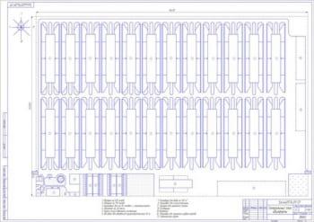 1.Чертеж генерального плана овцефермы (формат А1) с объектами