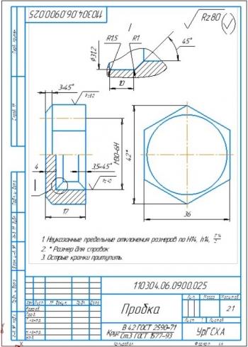 6.Деталь - пробка стальная (на формате А4)
